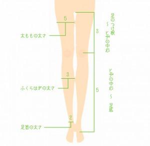 美脚のゴールデンバランスイメージ